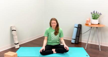Episode 21 Forest Meditation